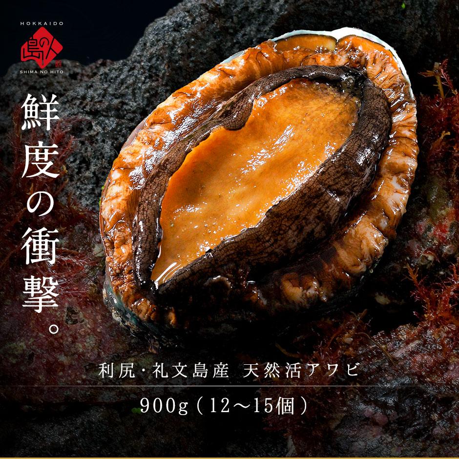 礼文・利尻島産 活エゾアワビ S~Mサイズ 900g(12~15個)